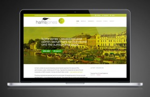 recruitment-website-design-sputnik