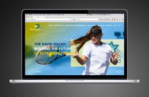 David Squad website design and production